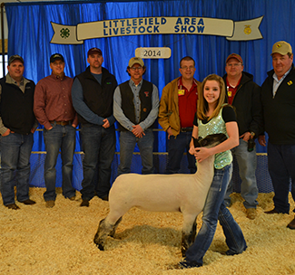 A young woman stands with a sheep at the Littlefield Area Livestock Show
